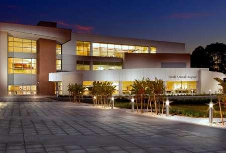 University-of-FL-Exterior-slide