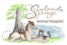 Sanlando Springs Animal Hospital